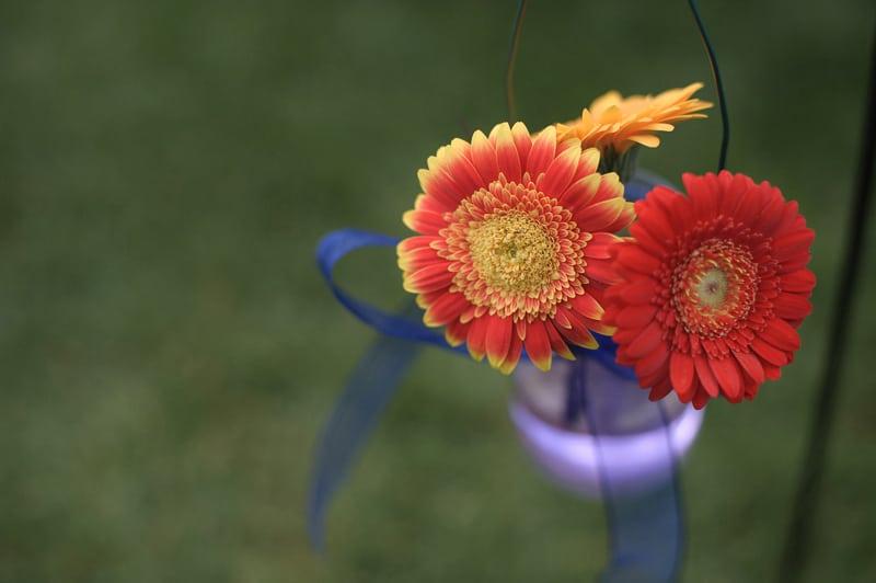 south-farm-wedding_nikki-stephen_ria-mishaal-photography-044