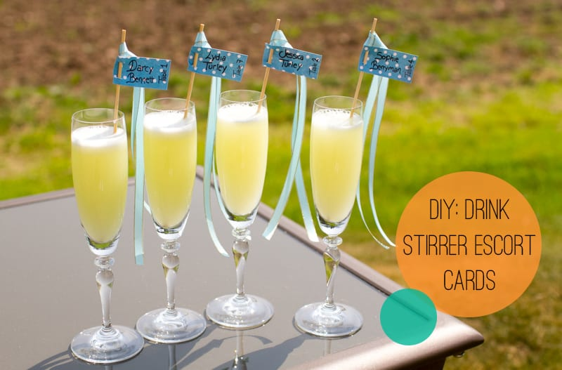DIY Drink stirrer escort cards