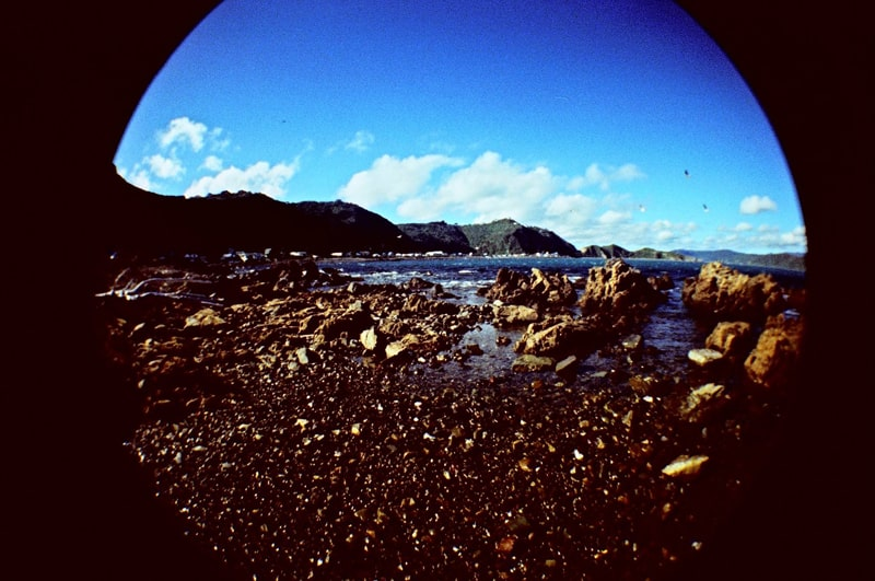 LOMO Fisheye (credit Peter Smyth)
