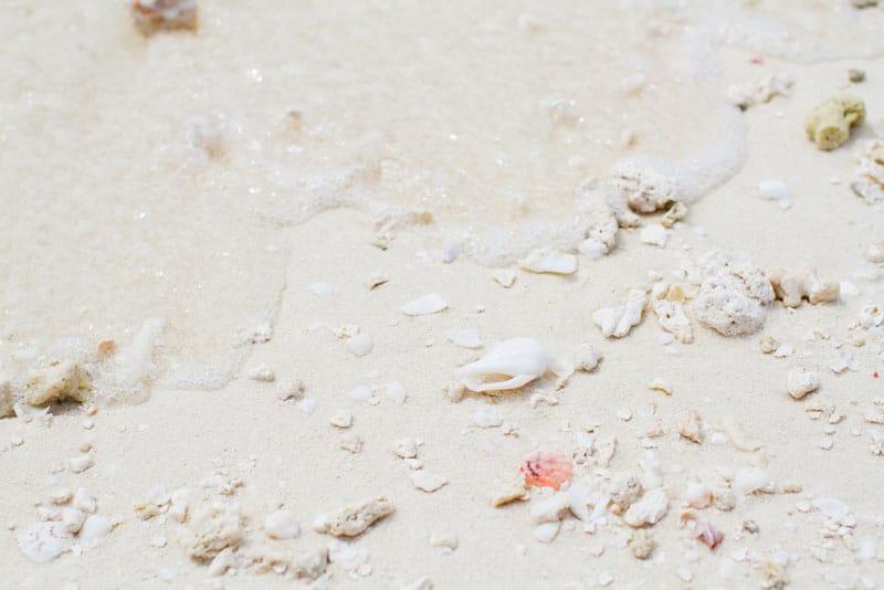 Maldives Photos-12