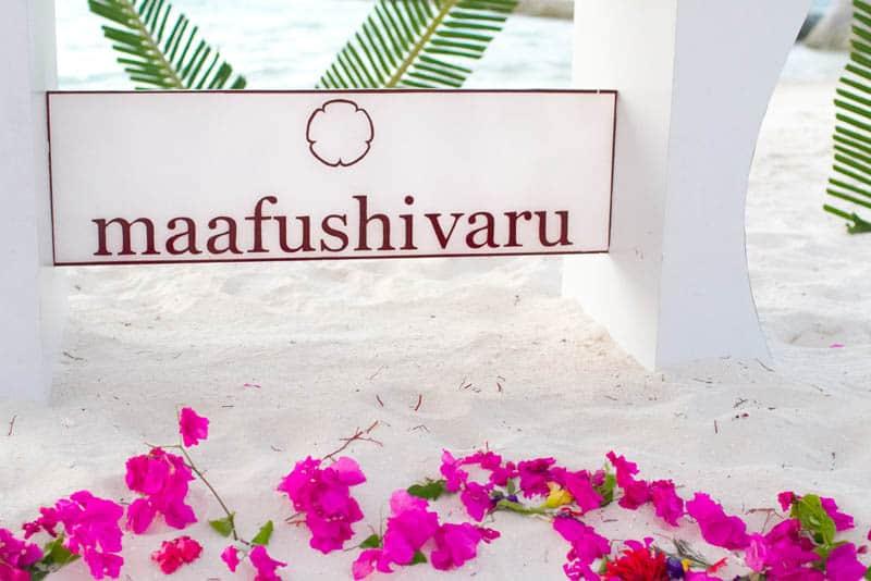 Maldives Photos-123