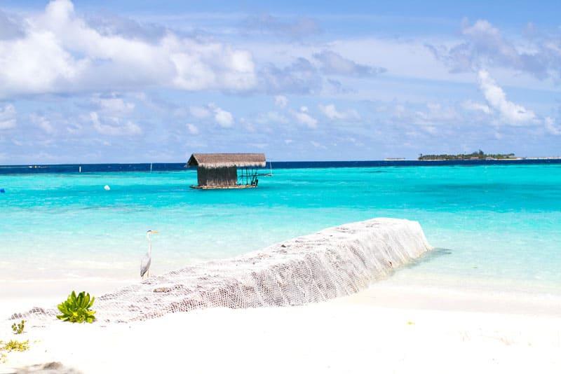 Maldives Photos-25