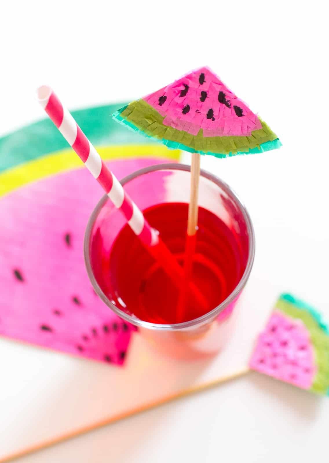 Watermelon Drink Stirrer DIY-11