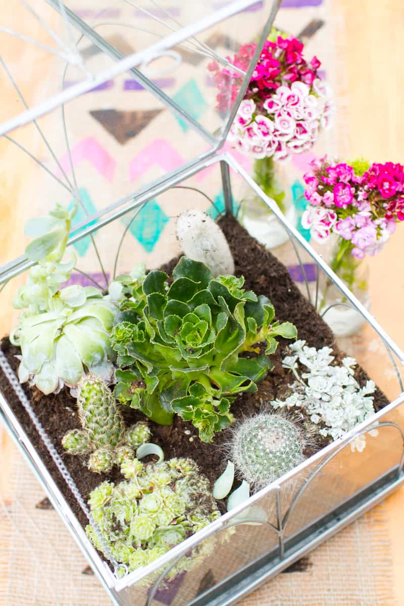 How To Make Your Own Terrarium Centerpiece Bespoke Bride Wedding Blog