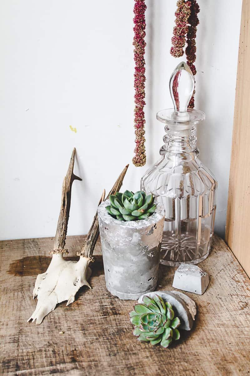 DIY Concrete Vase Silver Leaf Succulents-2
