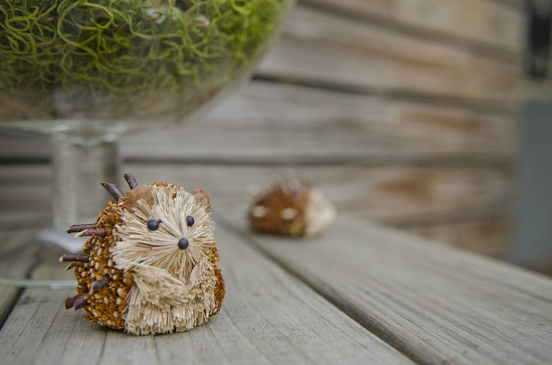 A Whimsical nature inspired wedding with woodland animals (6)