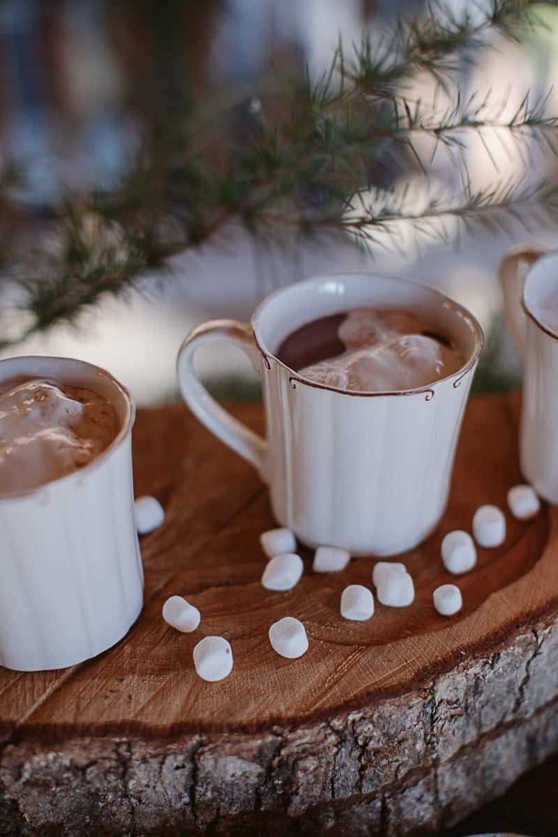 Christmas Bridal Brunch Log Cabin Hot Chocolate Festive Shoot-6