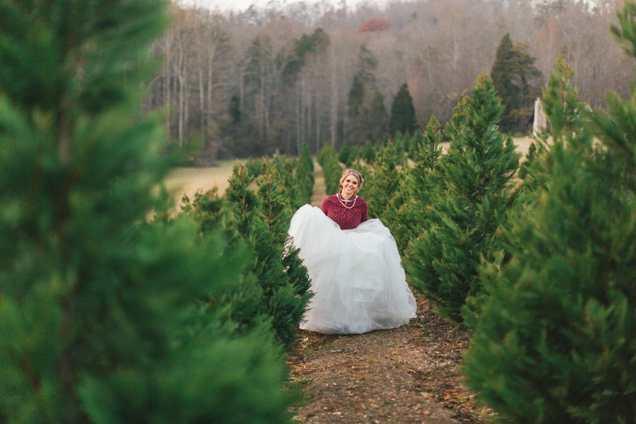 Festive Wedding Inspiration on a Christmas Tree Farm 19