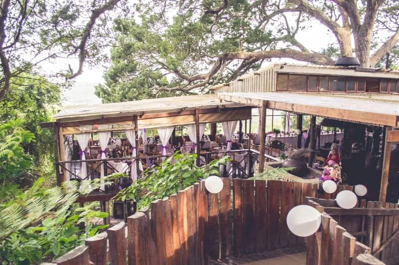 Sharlene and Zane's Bold Woodland Wedding in a treehouse  (19)