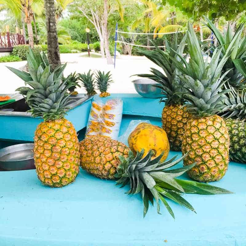 Dominican Republic La Romana Travel Guide Visit honeymoon holiday-12