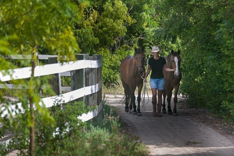 10 Unique honeymoon activities - Australian Outback