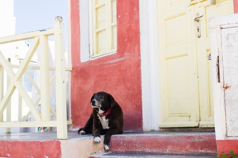 Santorini Oia Travel Guide Reccomendations Honeymoon Colourful Place Greece_-55