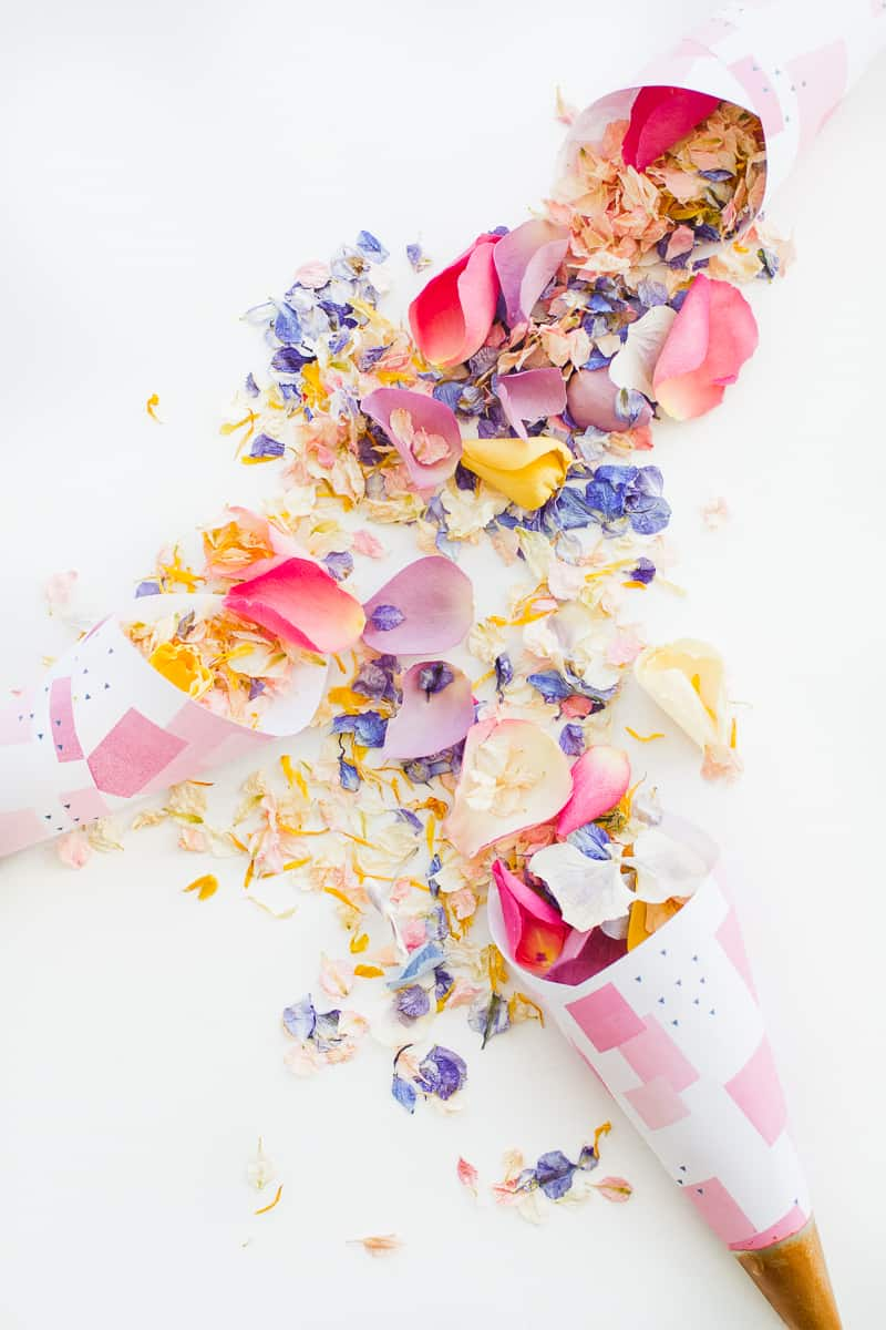 Confetti cone free printable pink abstract download natural confetti petals shropshire petals colourful wedding inspiration-10