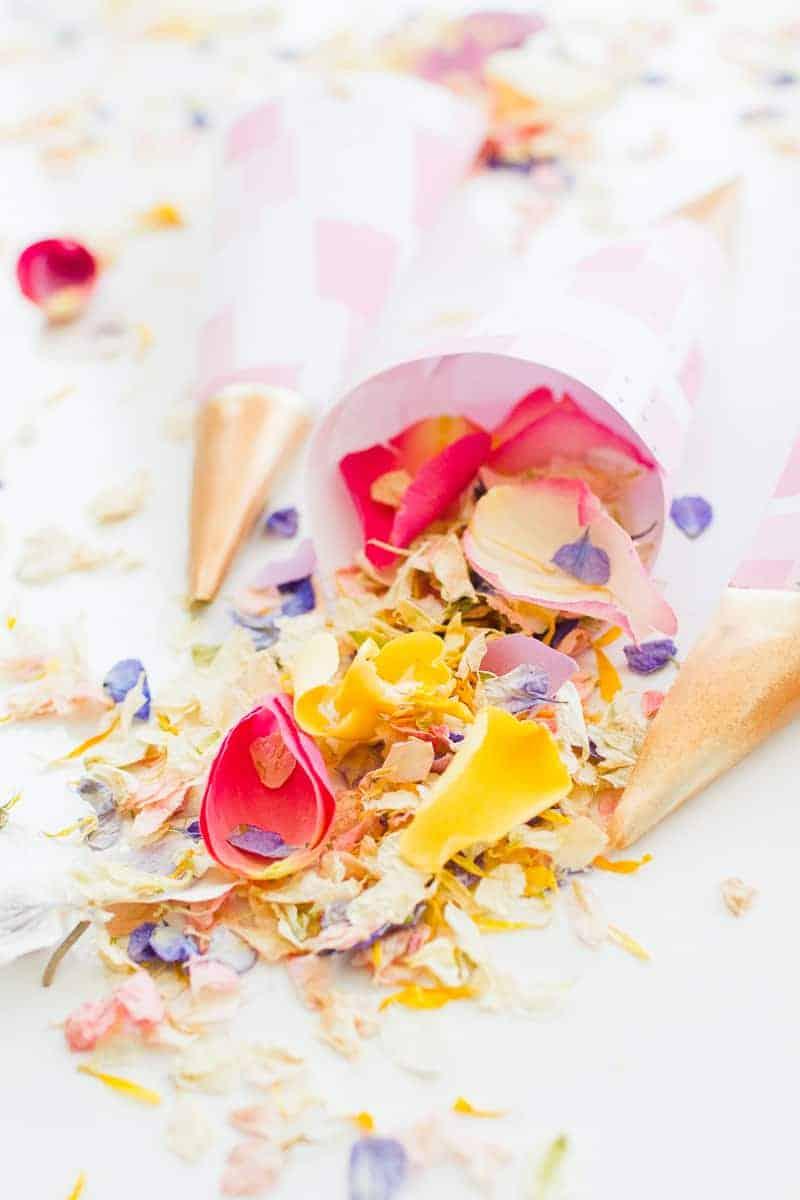 Confetti cone free printable pink abstract download natural confetti petals shropshire petals colourful wedding inspiration-15
