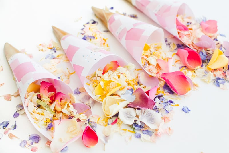 Confetti cone free printable pink abstract download natural confetti petals shropshire petals colourful wedding inspiration-9