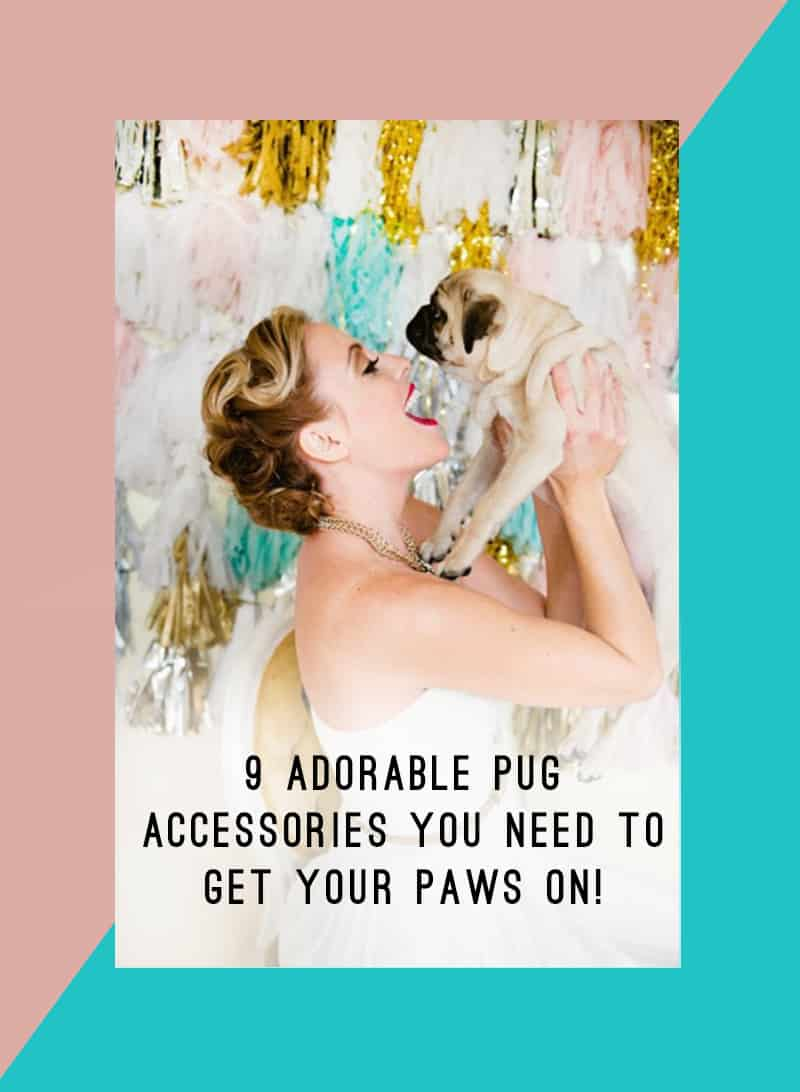 9 ADORABLE PUG ACCESSORIES YOU NEED TO GET YOUR PAWS ON 2