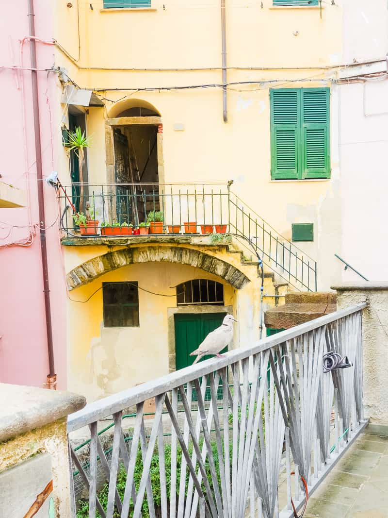 Cinque Terre Travel Guide Train Hiking Italy Information Advice Reccomendation Colourful_-26