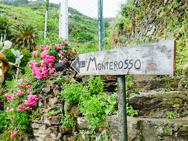 Cinque Terre Travel Guide Train Hiking Italy Information Advice Reccomendation Colourful_-51