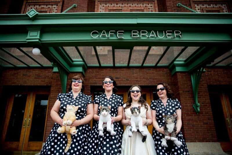 Cats at Weddings 7