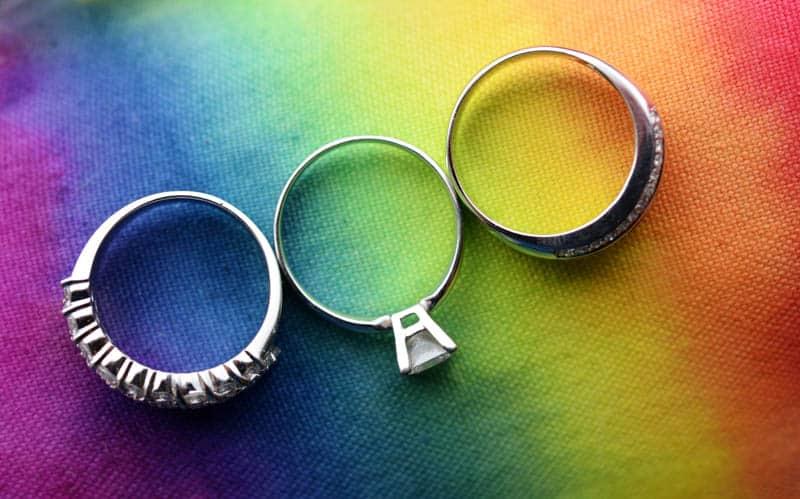 RAINBOW DOG RESCUE GAY WEDDING (1)