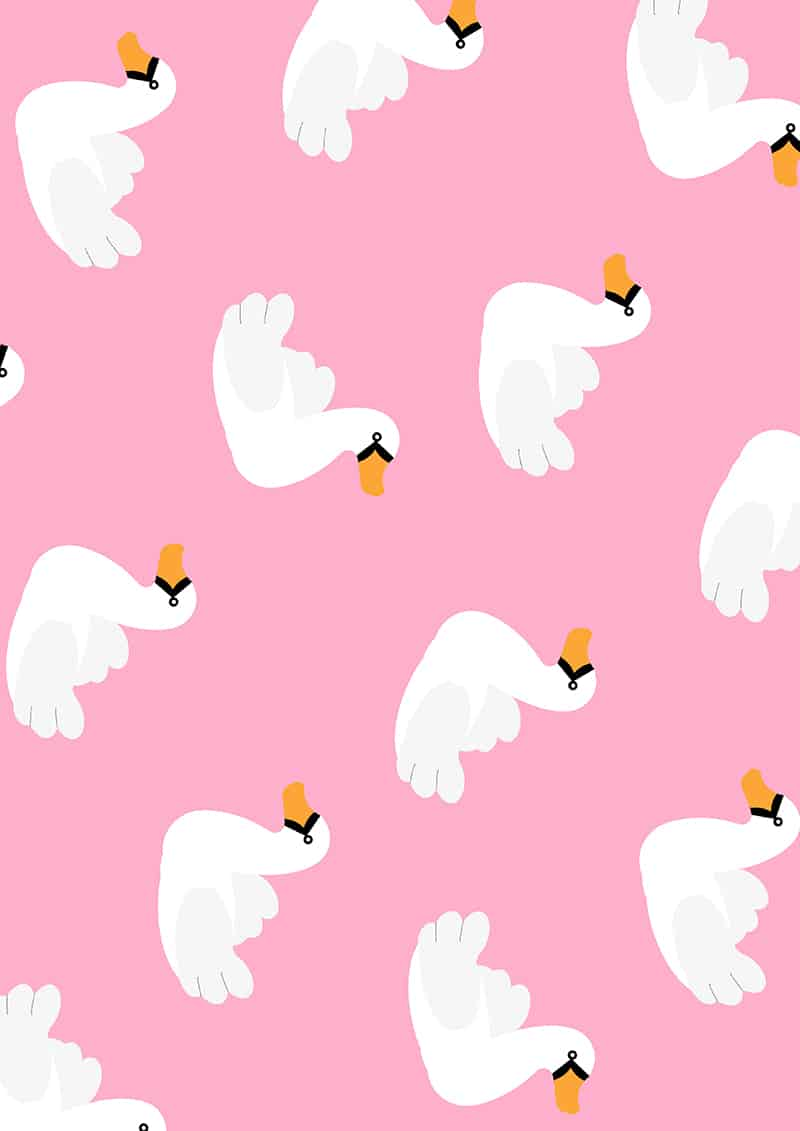 swan-pool-float-wrapping-paper-christmas-gift-wrap