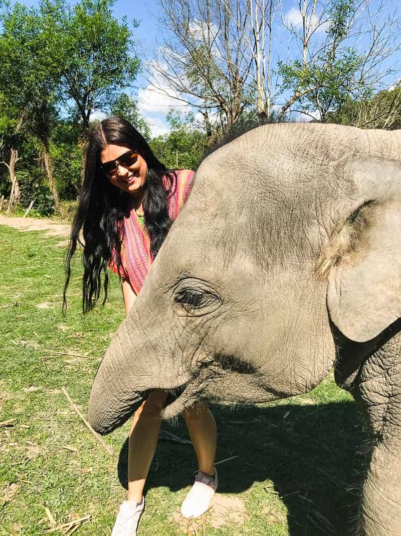 Elephant Jungle Santuary Chang Mai Thailand Ethical Sustainable Eco-Tourism Welfare-30