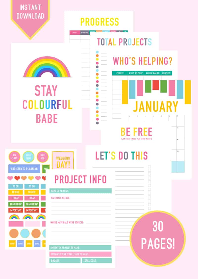 Printable DIY Wedding Planner Organiser fun 2