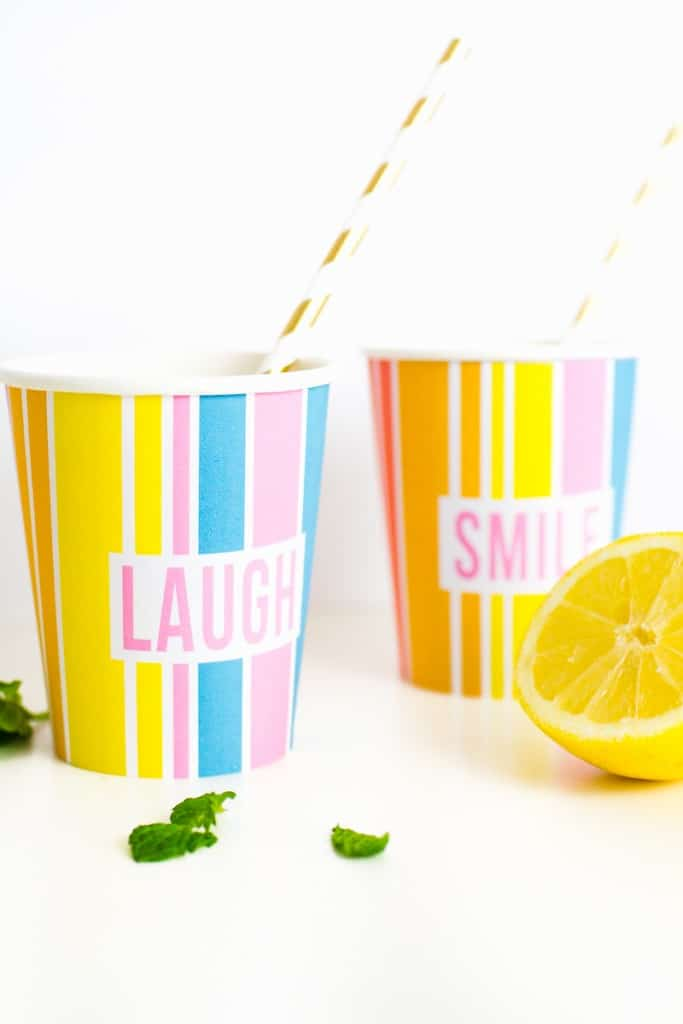RAINBOW PRINTABLE CUP WRAPPERS FOR BACHELORETTE PARTY ...
