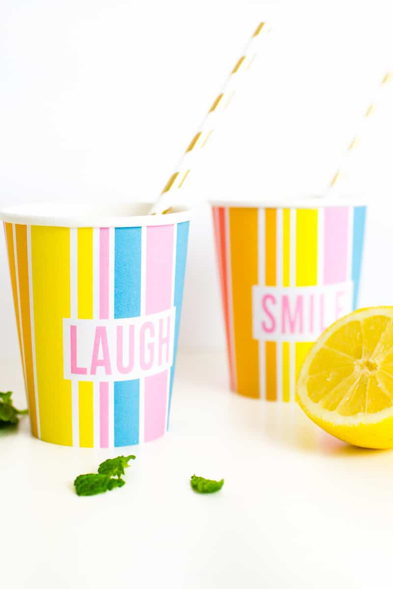 Printable Cup Wraps Rainbow Colourful Fun Party Bachelorette Hen Bridal Shower Birthday Slogan DIY-1