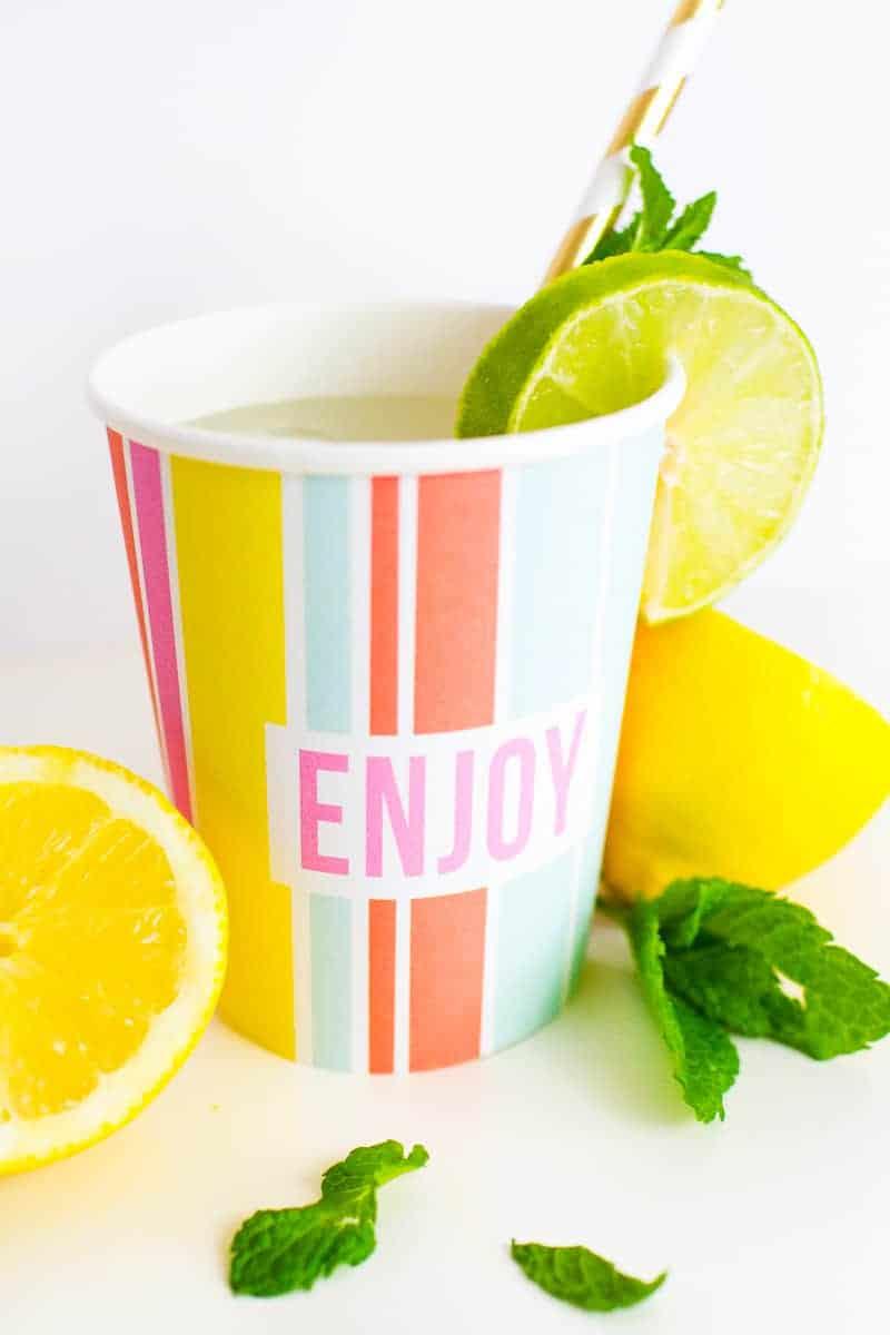 Printable Cup Wraps Rainbow Colourful Fun Party Bachelorette Hen Bridal Shower Birthday Slogan DIY-4