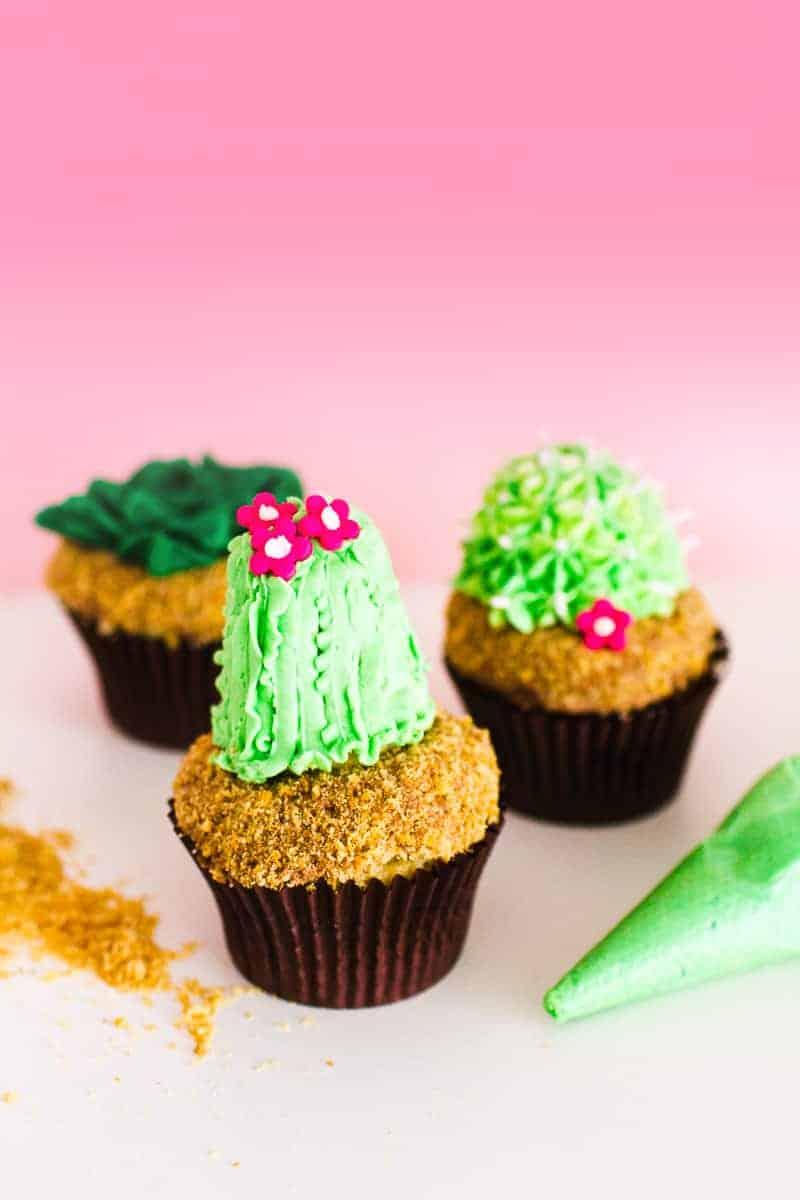 DIY Succulent Cactus Cupcakes Tutorial Cacti Fun Unique Terrarium Two Little Cats Bakery Greenery Green Spring Themed-10