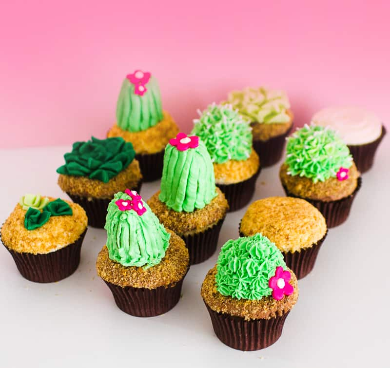 DIY Succulent Cactus Cupcakes Tutorial Cacti Fun Unique Terrarium Two Little Cats Bakery Greenery Green Spring Themed-15