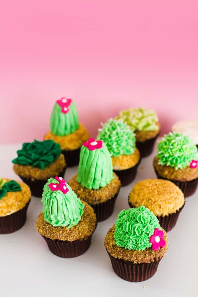 DIY Succulent Cactus Cupcakes Tutorial Cacti Fun Unique Terrarium Two Little Cats Bakery Greenery Green Spring Themed-16