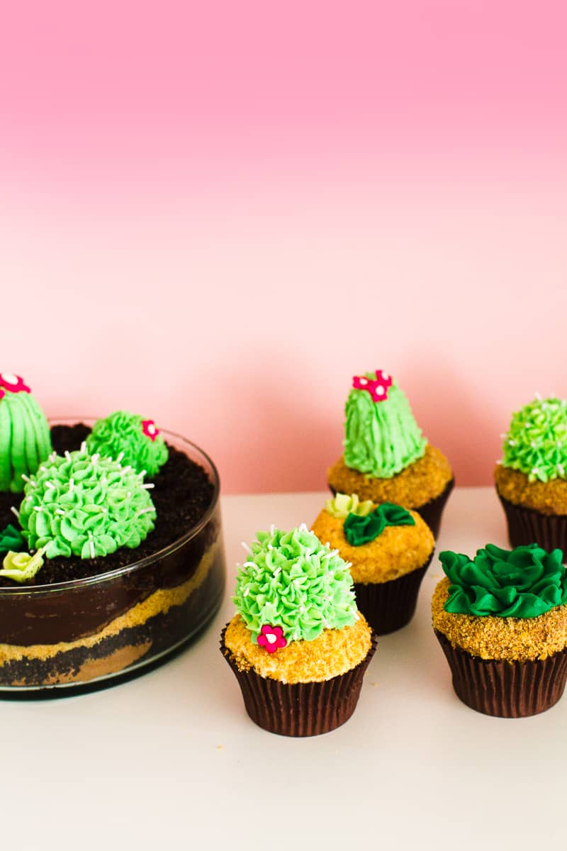 DIY Succulent Cactus Cupcakes Tutorial Cacti Fun Unique Terrarium Two Little Cats Bakery Greenery Green Spring Themed-22
