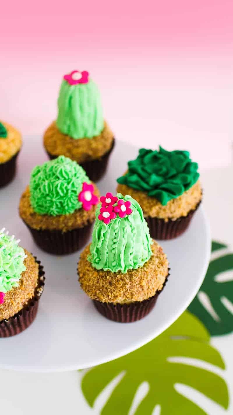 DIY Succulent Cactus Cupcakes Tutorial Cacti Fun Unique Terrarium Two Little Cats Bakery Greenery Green Spring Themed-4