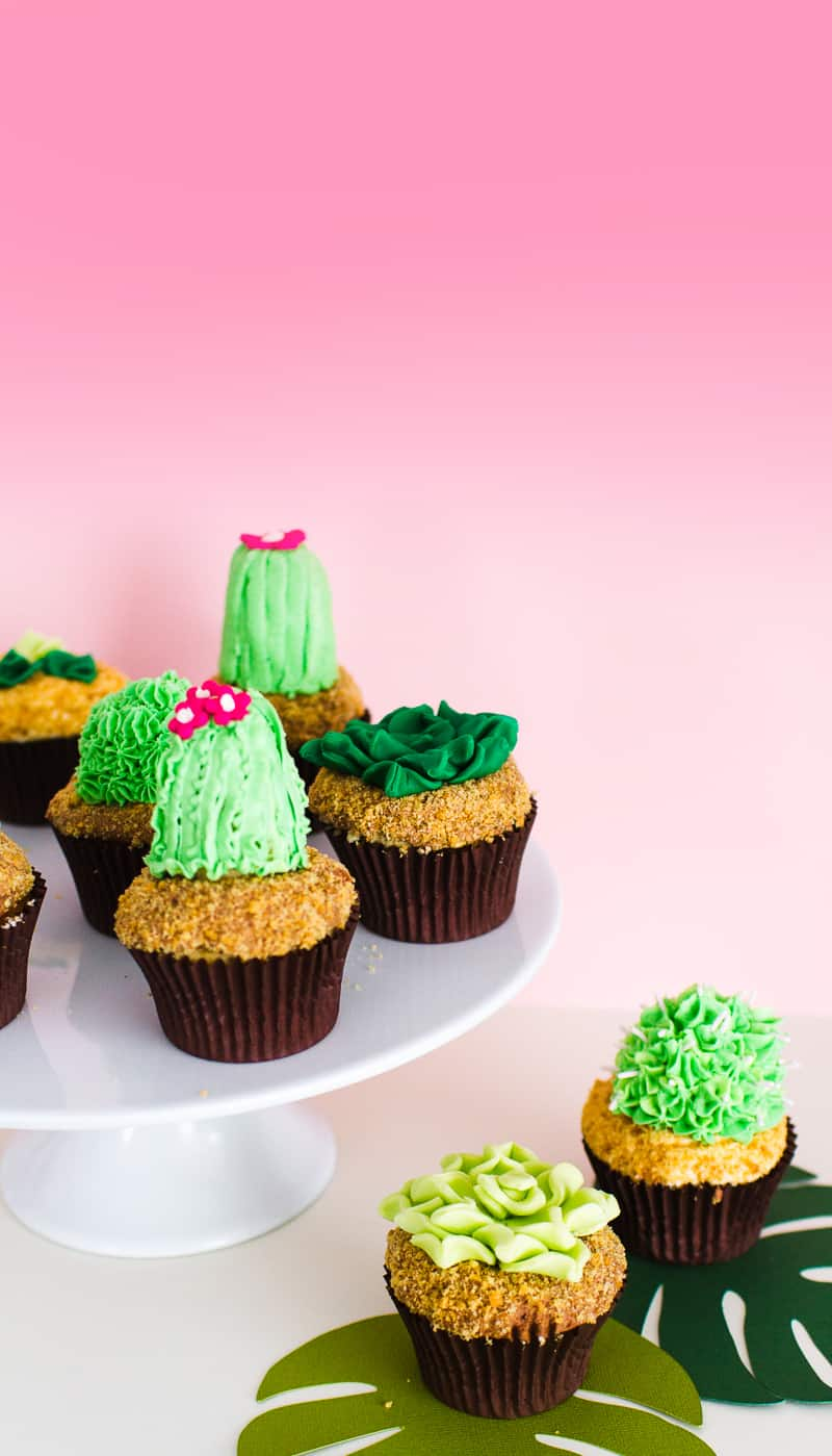 DIY Succulent Cactus Cupcakes Tutorial Cacti Fun Unique Terrarium Two Little Cats Bakery Greenery Green Spring Themed-6