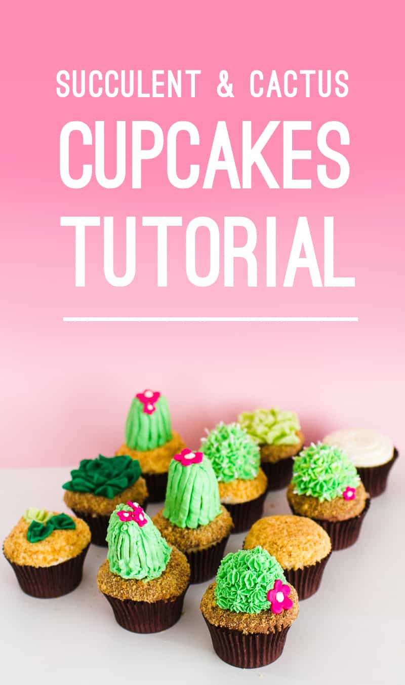 DIY Succulent Cactus Cupcakes Tutorial Cacti Fun Unique Terrarium Two Little Cats Bakery Greenery Green Spring Themed Title